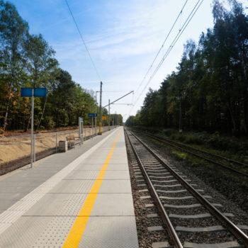 Zdjęcie: nowy peron na przystanku w Szczejkowicach.