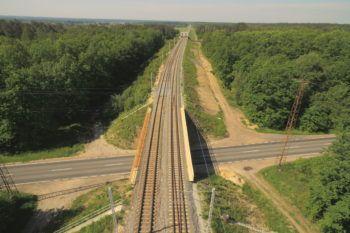 Obrazek: widok z góry na most nad drogą. Po obu stronach zielony las.
